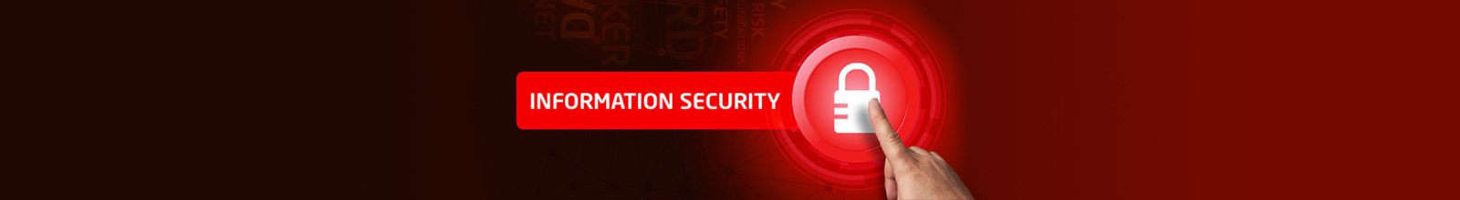 Information Security Services, Threat Assessment, Vulnerability Assessment and Penetration Testing